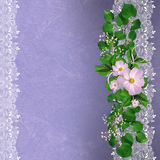 Lavender background with floral border Royalty Free Stock Image