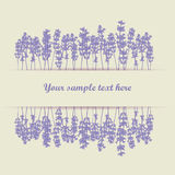 Lavender background royalty free illustration