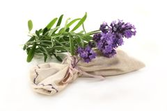 Lavender bag Royalty Free Stock Photo