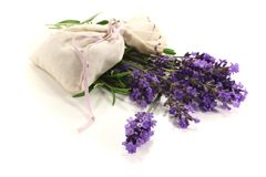 Lavender bag with violet flowers and leaves Royalty Free Stock Images
