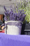 Lavender basket. A container with fresh picked lavender sits on a table at a local farmers market Stock Images