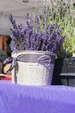 Lavender basket Stock Images