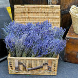 Lavender basket Stock Photos
