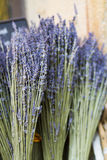 Lavender in basket Stock Images