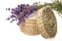 Lavender bath Stock Images