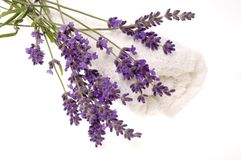 Lavender bath Royalty Free Stock Photos