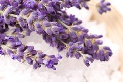 Lavender bath Stock Photos