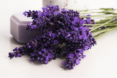 Lavender bath Royalty Free Stock Photography