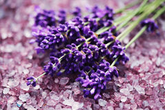 Lavender bath salt Stock Photos