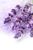 Lavender bath salt Royalty Free Stock Photography