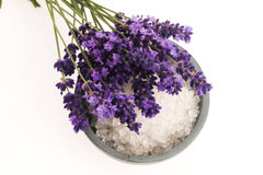 Lavender bath salt. And some fresh lavender stock images