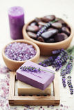 Lavender beauty Royalty Free Stock Images