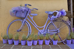 Lavender & Bicycle Royalty Free Stock Photo