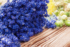 Lavender and black cumin Royalty Free Stock Images