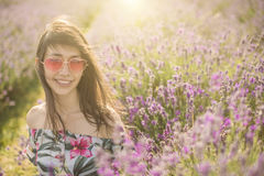 Lavender blooming flowers. Stock Photos