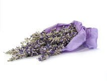 Lavender Bouquet Stock Photo