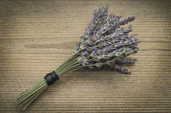 Lavender bouquet Royalty Free Stock Photo