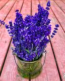 Lavender bouquet Royalty Free Stock Image