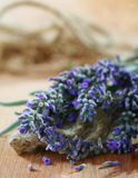 Lavender bouquet with seeds. Royalty Free Stock Image
