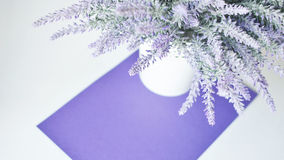 A lavender bouquet in a vase on a white violet background Royalty Free Stock Photo