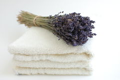Lavender Bouquet on White Towels. A bouquet of dry lavender on soft white towels on a white background Stock Image