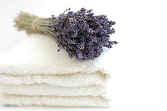Lavender Bouquet on White Towels. A bouquet of dry lavender on soft white towels on a white background Royalty Free Stock Images