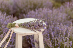 Lavender bouquet on a wooden bench in lavender field Stock Photography