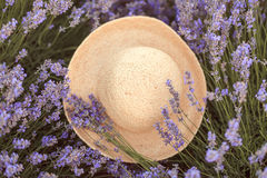Lavender bouquet on a woven hat fedora Stock Photography