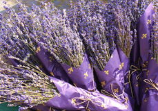 Lavender bouquets. Lavender is famous for its pleasant scent Stock Images