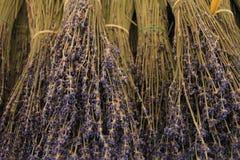 Lavender bouquets Stock Image