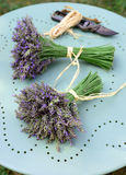 Lavender bouquets Royalty Free Stock Photography