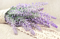 Lavender branch in lace Royalty Free Stock Photography