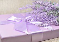 Lavender branch over a gift box Royalty Free Stock Images