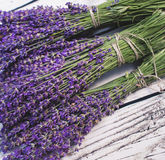 Lavender bunch on wood background Stock Photo