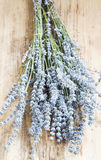 Lavender Bunch on Wooden Background Stock Image