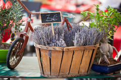 Lavender bunches selling in a outdoor french market Royalty Free Stock Photos