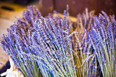 Lavender bunches selling in a outdoor french market Royalty Free Stock Photography