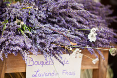 Lavender bunches selling in an outdoor french market Stock Image