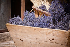 Lavender bunches selling in an outdoor french market Royalty Free Stock Image