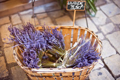 Lavender bunches selling in an outdoor french market Royalty Free Stock Photography