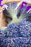 Lavender bunches selling in a outdoor french market Royalty Free Stock Image