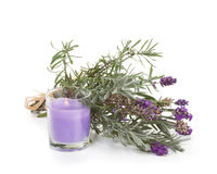 Lavender Candle Stock Photography