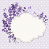 Lavender card Royalty Free Stock Image