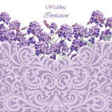 Lavender Card with lace ornamented border. Vector Gentle blossom floral bouquet. Vintage Label with lavender beautiful fragrance Stock Images
