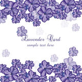 Lavender color flowers Card Border. Gentle blossom floral bouquet. Vintage Label with lavender beautiful fragrance. Vector Stock Photography