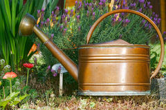 Lavender and Copper Watering can. Flowers, lavender and a old watering can in the home garden Stock Photos