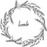 Lavender crown frame with leaves royalty free illustration