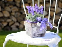 Lavender decoration Stock Photos