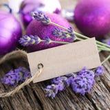 Lavender, description field Royalty Free Stock Photo