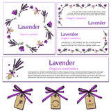 Lavender design elements. Vintage hand drawn lavender design elements on white background. Engraving illustration. Vector lavender template  in vintage style Royalty Free Stock Photography